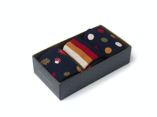 Picture of Gift Box Autumn Blue
