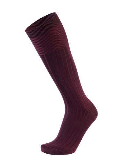 Picture of HIGH KNEE CANALÉ BORDEAUX